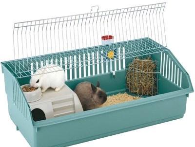 Два кролика в клетке