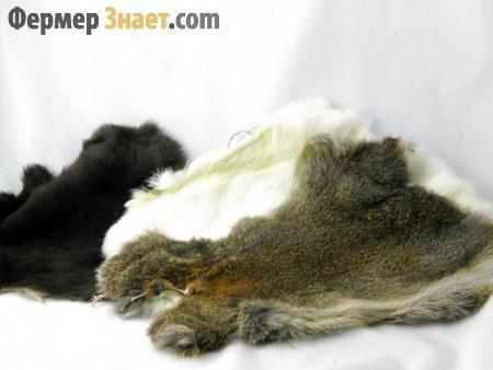 Выделка шкур кроликов