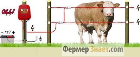 Схема электроизгороди