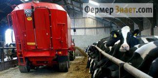 Раздача корма животным