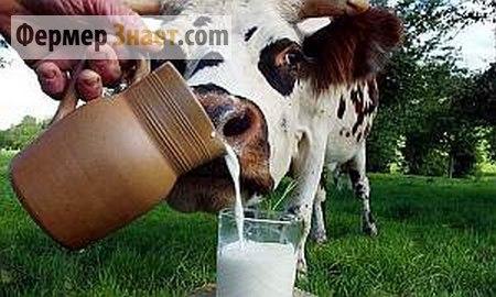 Парное молоко